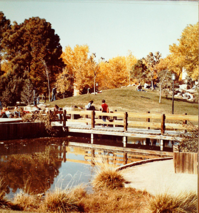 Figure 4. View of footbridge, Duck Pond, October 1974. Source: Oversize, Box 5, Dept. of Facility Planning architectural drawings.